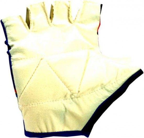 Nalini Ibanesto 2002 Gloves (Short Finger) - Professional Cycling Team